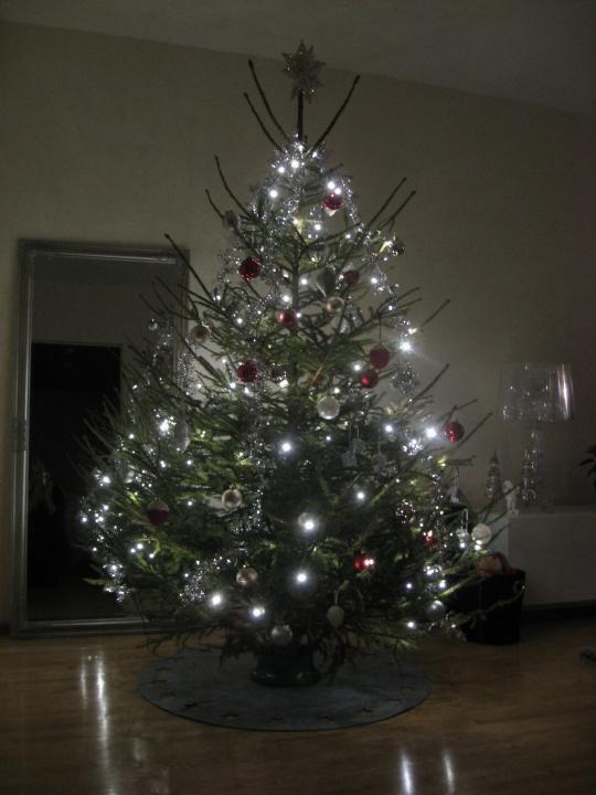 Joulukuusi -12